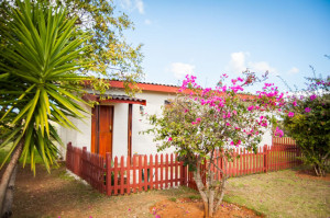 Cheetah-Lodge-Accommodation-in-Mossel-Bay-50