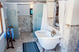 Cheetah-Lodge-Accommodation-in-Mossel-Bay-8