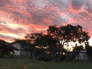 Cheetah Lodge Sunset